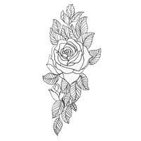 Colourless Rose